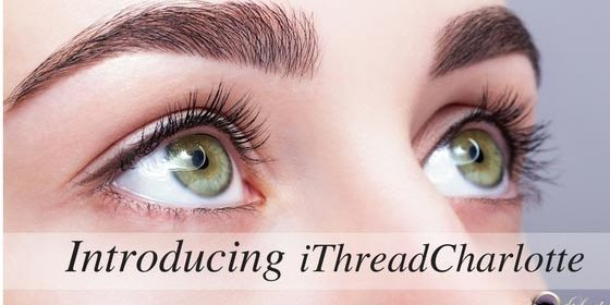 Lush Lashes and Beautiful Brows! - Eye Lash Extensions ...